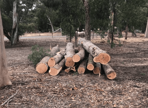 block clearing, land clearing