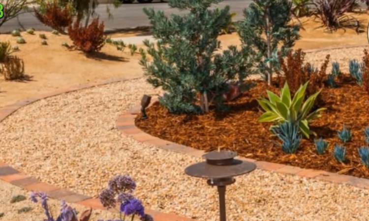 Wood Chips & Mulch Landscaping